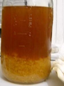 Kefir fermentado con Piloncillo o Panela