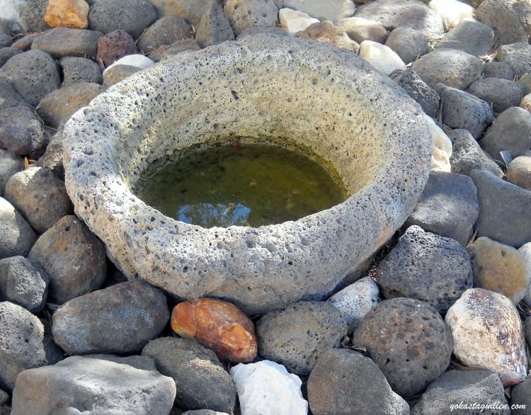Entre las piedras