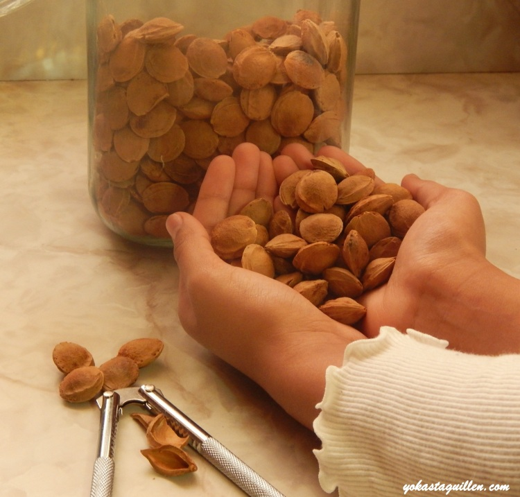Semillas de albaricoques, Apricots o Damasco