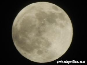 Luna 04/15/14