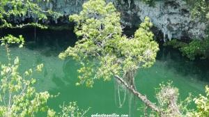 Lago Zaramagullones, Los Tes Ojos
